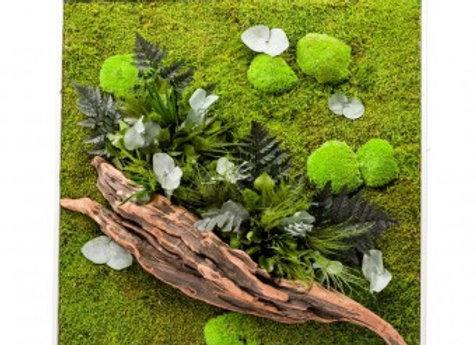 Cadre végétal Stabilisé Nature