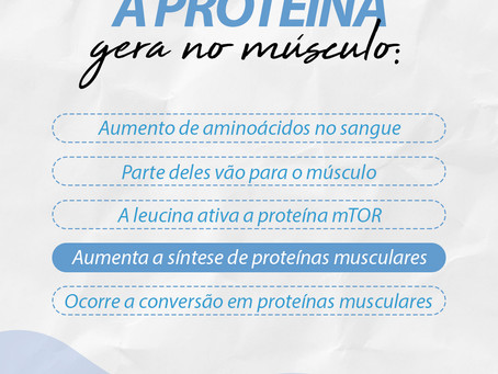 A proteína gera no músculo