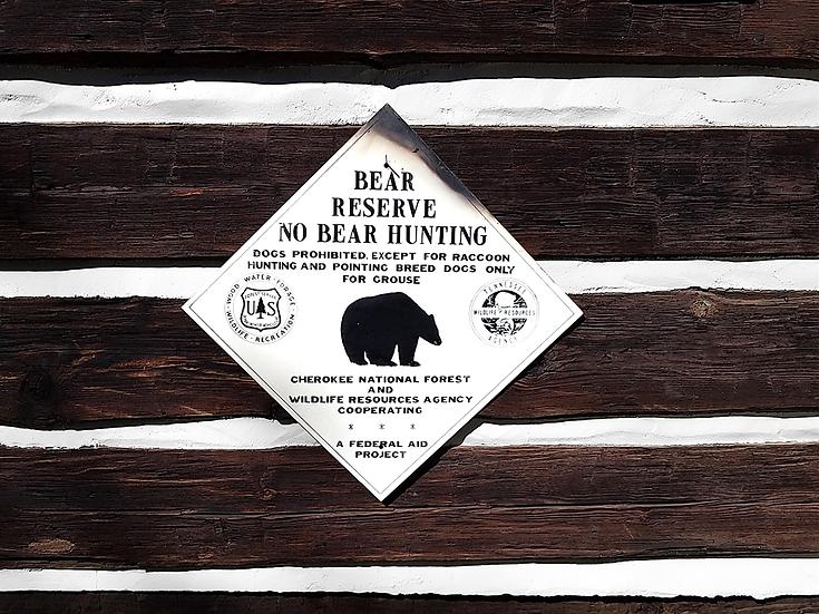 Vintage Wildlife Bear Sign