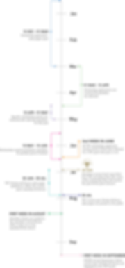 timeline-vertical-Covid.png