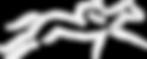 dmrt-logo.png