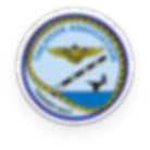 Tailhook Association Logo