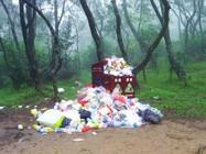 沒有垃圾桶的郊野公園更美麗