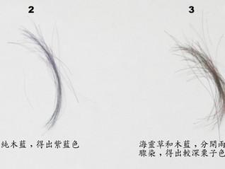 海靈草/木藍粉染髮: 一步式