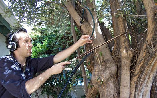 Instrumento de madera o madera como instrumento