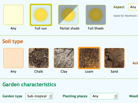 Plant Selector te recomienda qué plantar en tu jardín