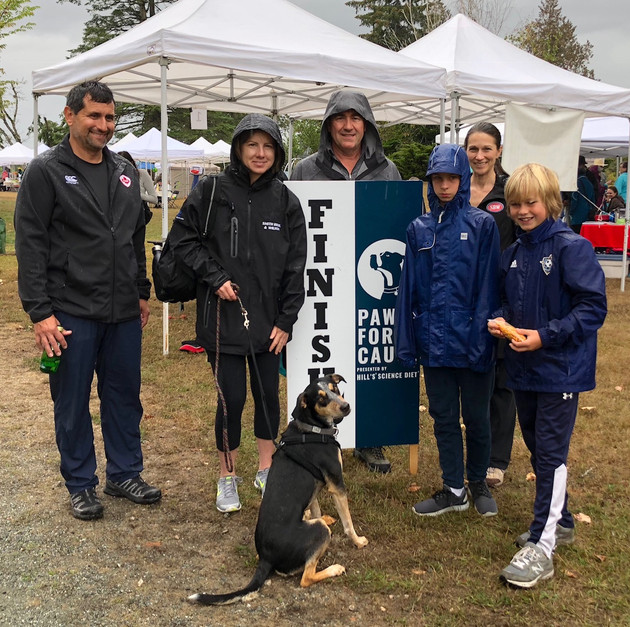 SPCA Paws for a Cause