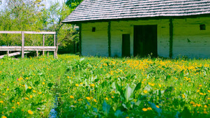 bran_village_museum_romania.jpg