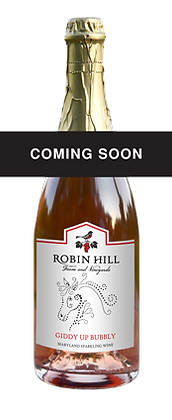 Robin Hill Giddy Up Champagne