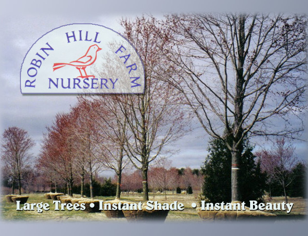 Robin Hill Nursery