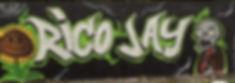 Stichting Rico-Jay