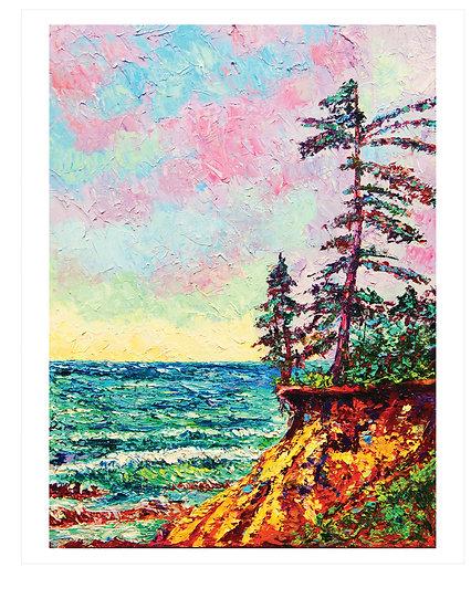 """Cliffside Pines"" Fine Art Print"
