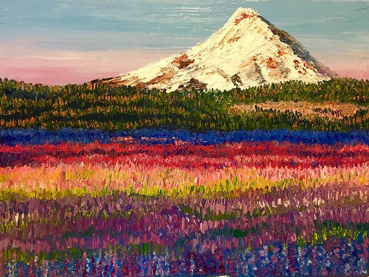 Lavender Fields 8x10