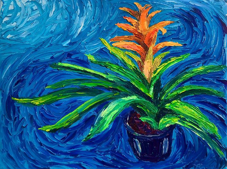 """Tangerine Bromeliad"" Fine Art Print"