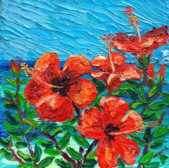 """La Jolla Hibiscus"" Fine Art Print"