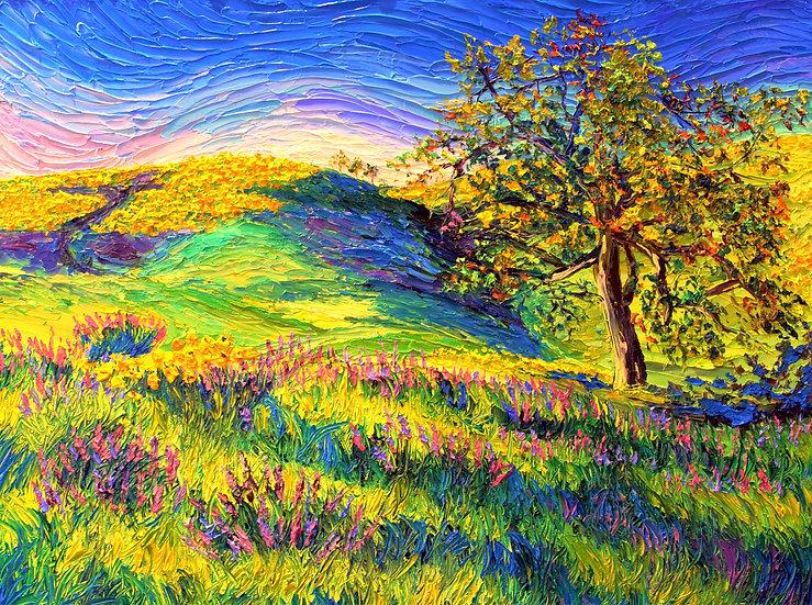 Wild Flower Hill