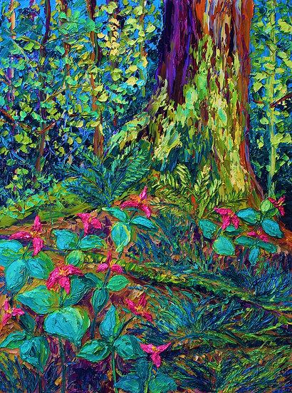 """Dance of the Trilliums"" Fine Art Print"
