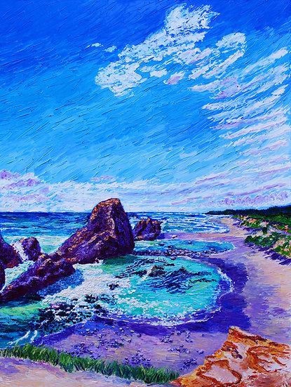 """Seal Rock Wayside"""