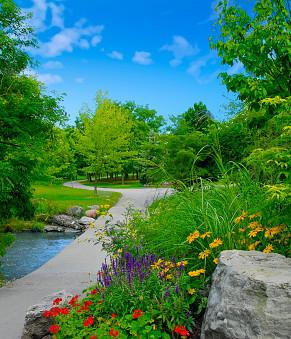 Top 5 Parks in Brampton To Enjoy This Summer