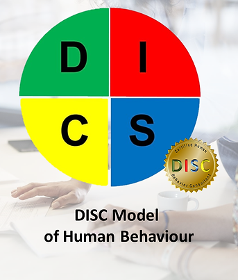 DISC pic for ABOUT page.png