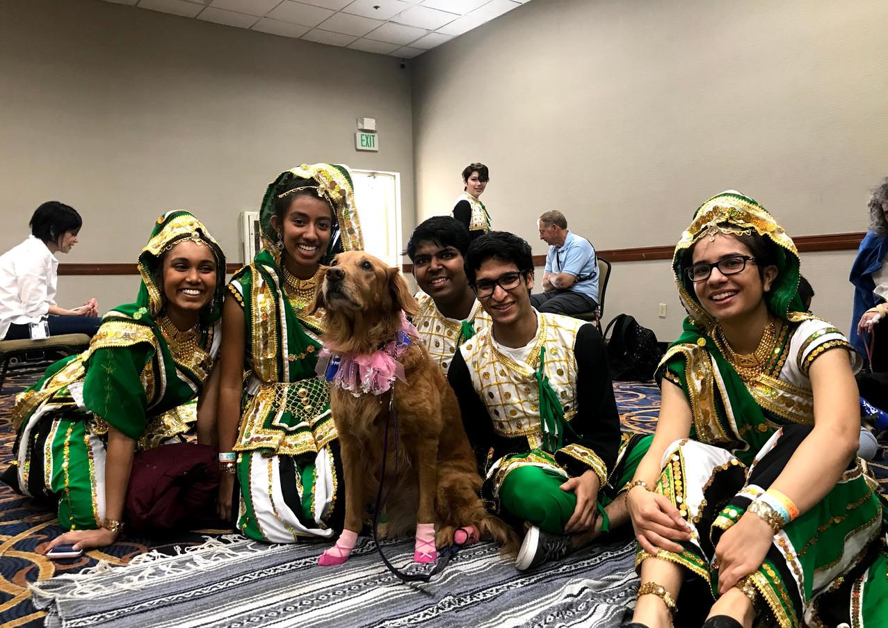 dog, honorary team member