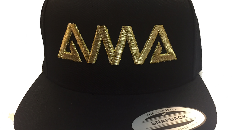 AMA Embroidered Logo Snapback Cap