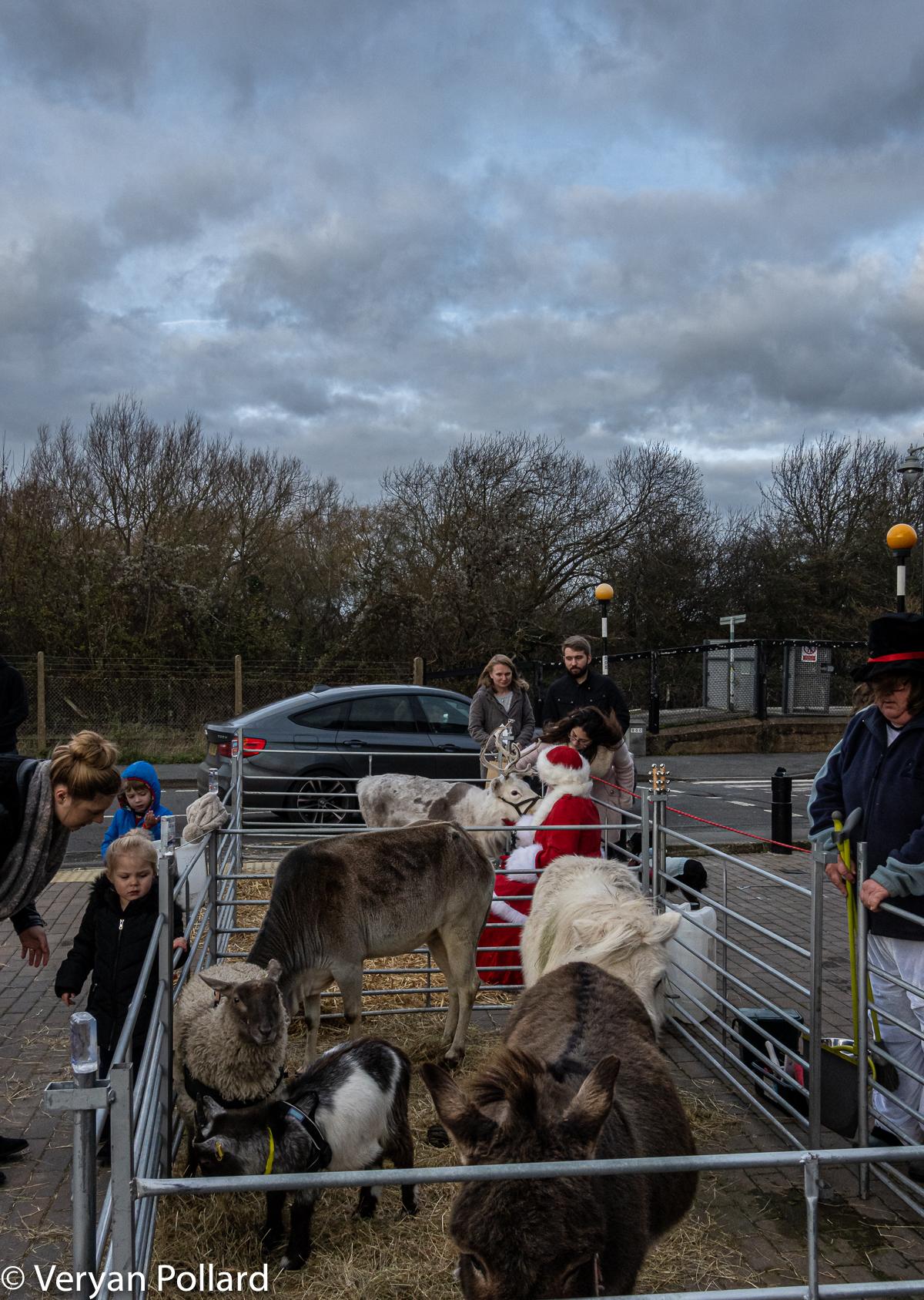 Christmas in Rye by Veryan Pollard-3