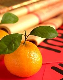 CNY-oranges-icon.jpg