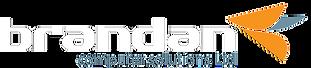 Brandan_Final_Logo_Reverse.png