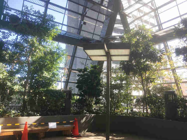 植物豊富な大同生命ビル内部