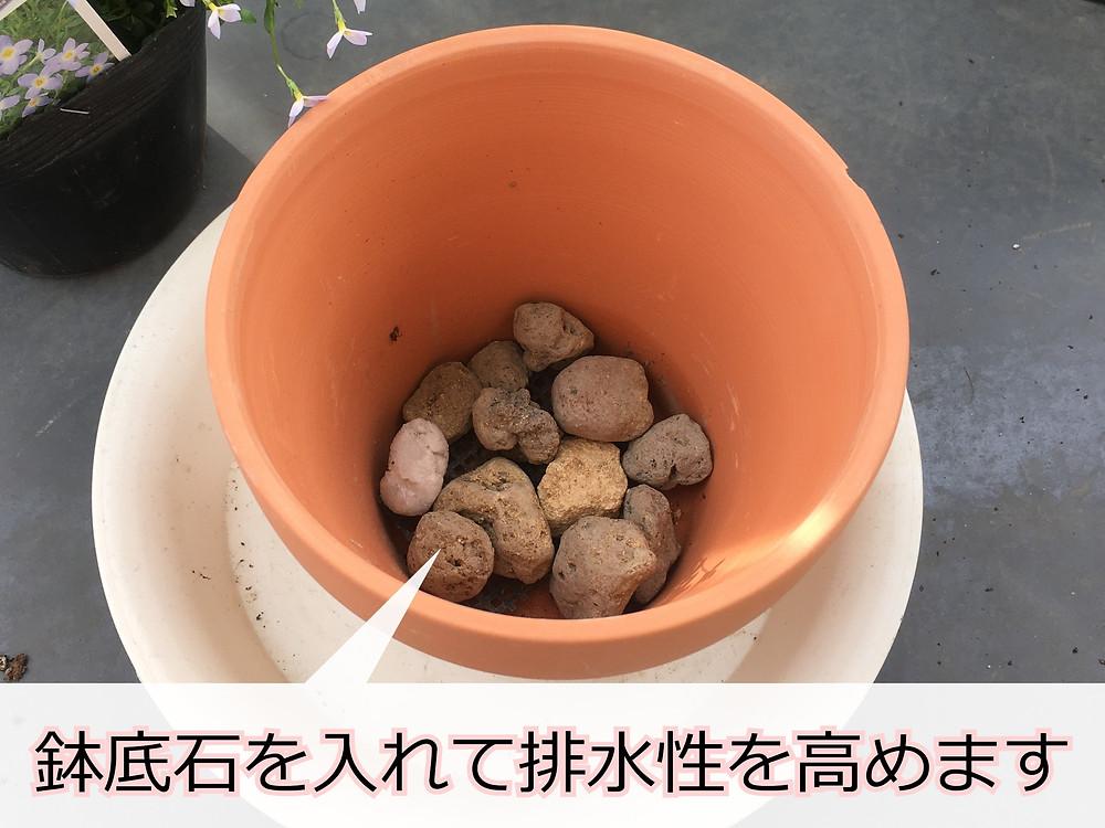 素焼き鉢に入れた鉢底石