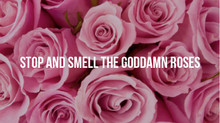 Stop and Smell The Goddamn Roses
