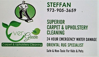 Carpet cleaner.jpg