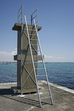Torre, 2007