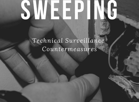 Online Bug Sweeping Course