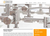 Pascal has a new website!