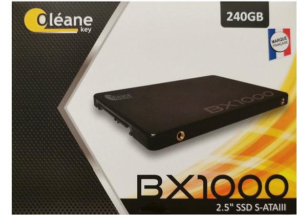 SDD OLÉANE KEY 2.5'' BX1000 240GB