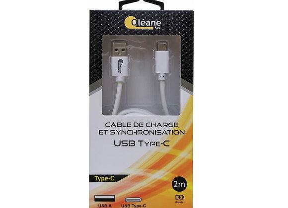 Câble de CHARGE et SYNCHRONISATION USB Type-C 2m