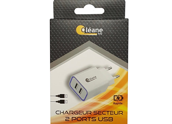 Chargeur USB 2 ports 3,1A