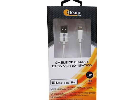 Câble de CHARGE et SYNCHRONISATION certifié MFI Apple 1m