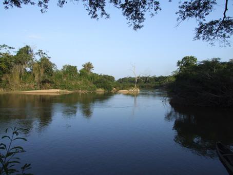 Rivière Rupununi, Guyana. Le domaine du Caïman noir.