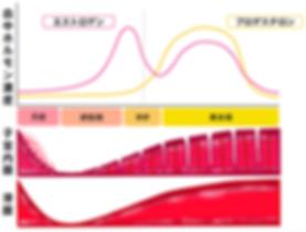 エストロゲン変化の図