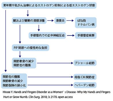 手疾患の図