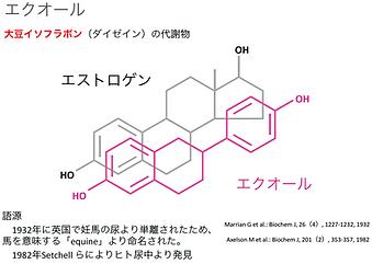 エストロゲンとエクオールの構造式の図