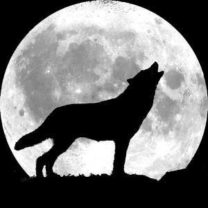 La pleine lune du loup - 5 janvier 2014