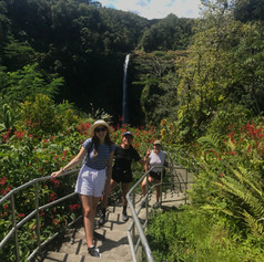 Akaka Falls Lookout