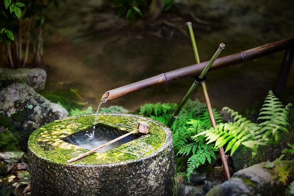 Jardin zen Kyoto Japon
