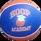 Hoop Ball.png
