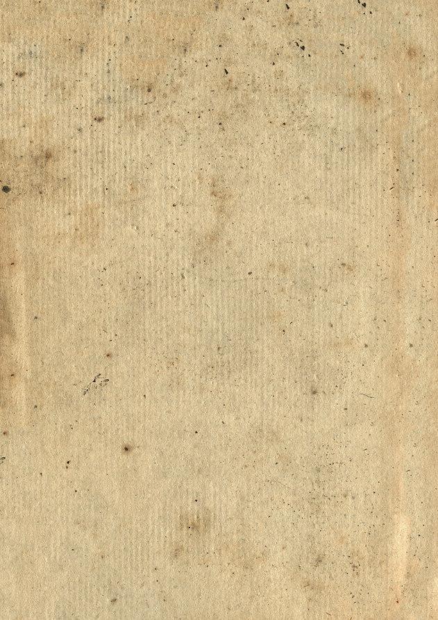 Paper Texture 5.jpg