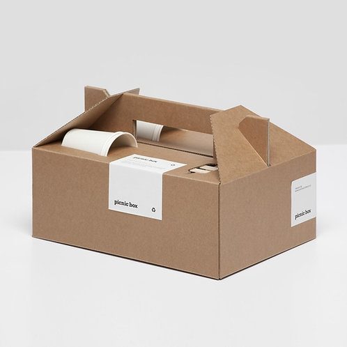 Picknick box karton (25 stuks)